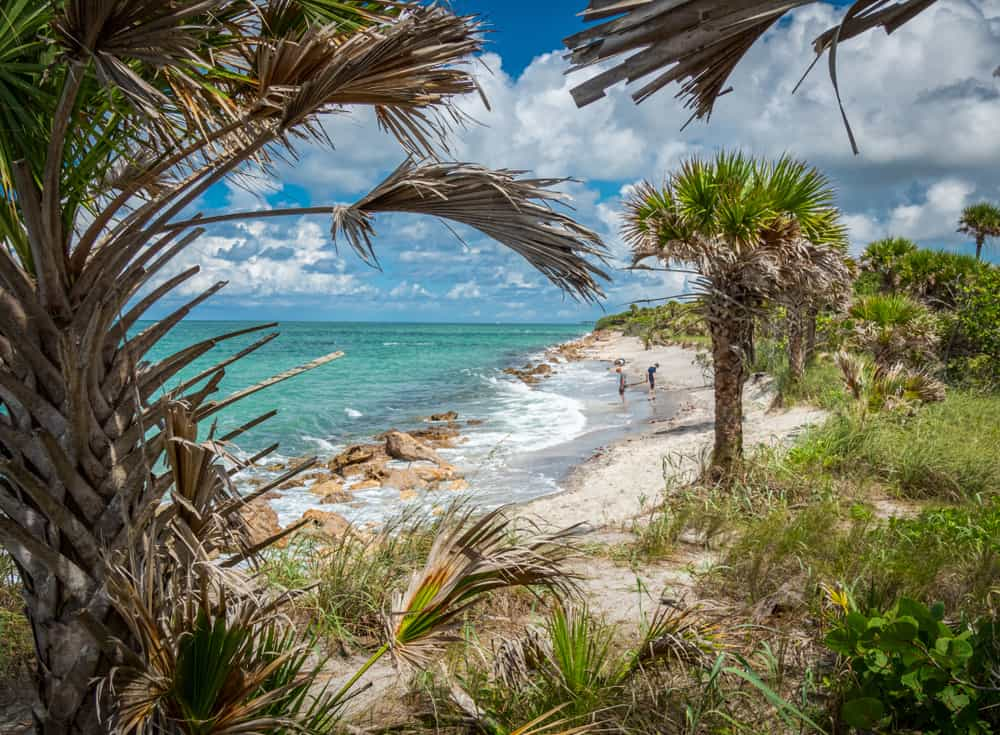 photo of Casperson Beach in Venice Beach Florida