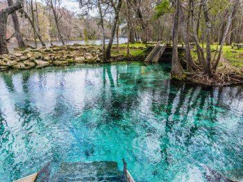 weeki wachee springs on your florida road trip