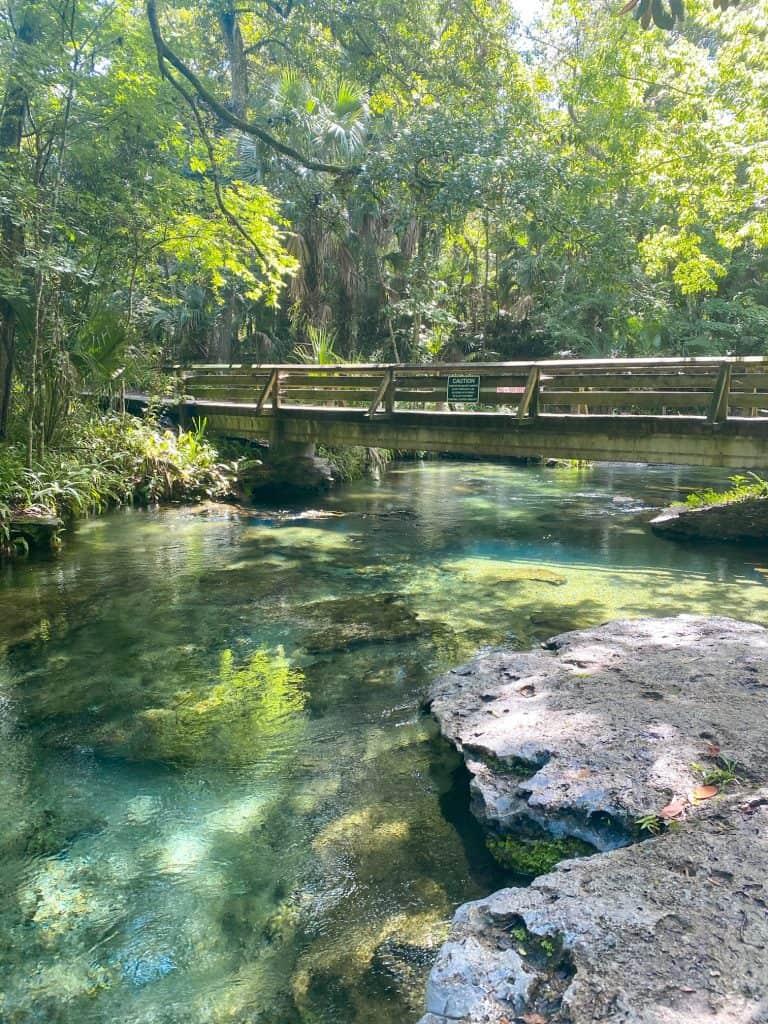 bridge crossing rock springs in Florida