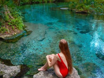 kelly park is one of the prettiest springs in florida