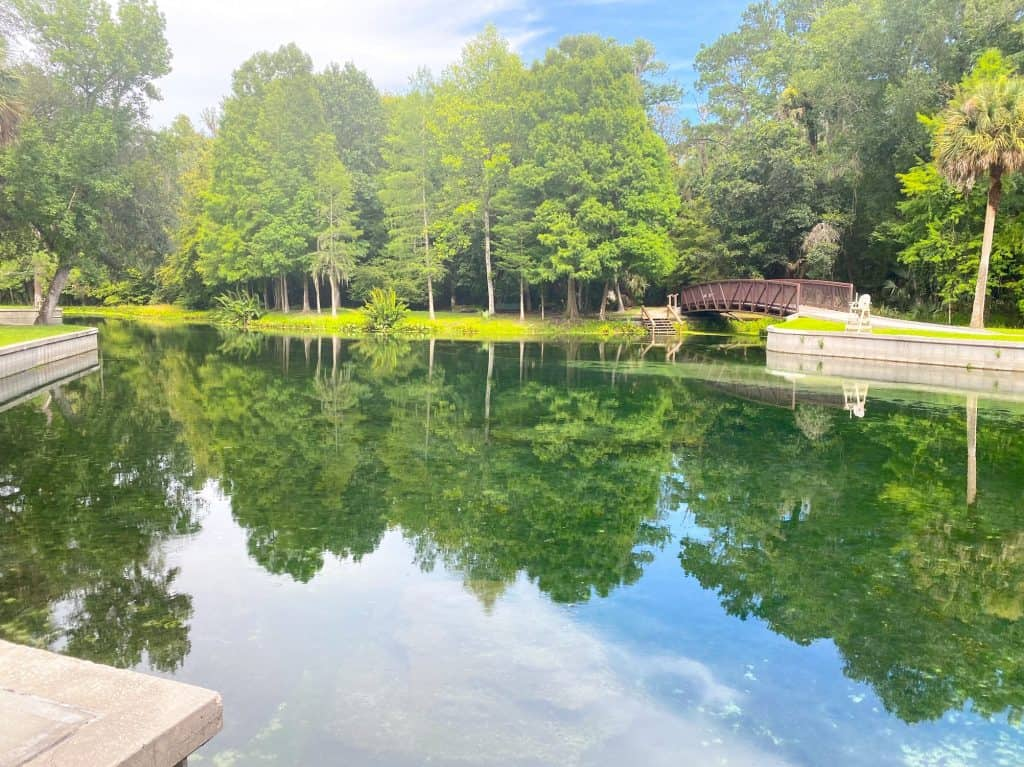 swimming hole at kelly park florida