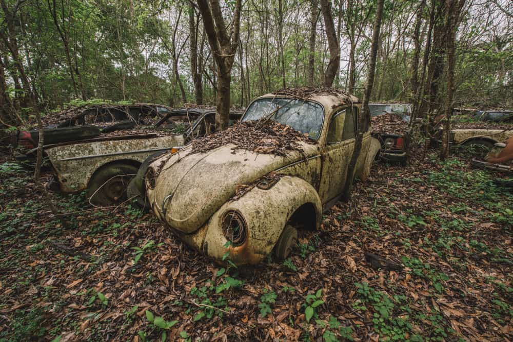 The Volkswagen Graveyard features old and decaying cars and parts.