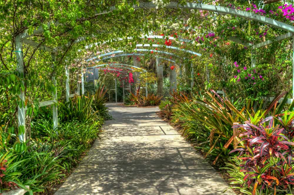 Napels Botanical Garden is one of the younger gardens, but it is 170 acres of paradise!