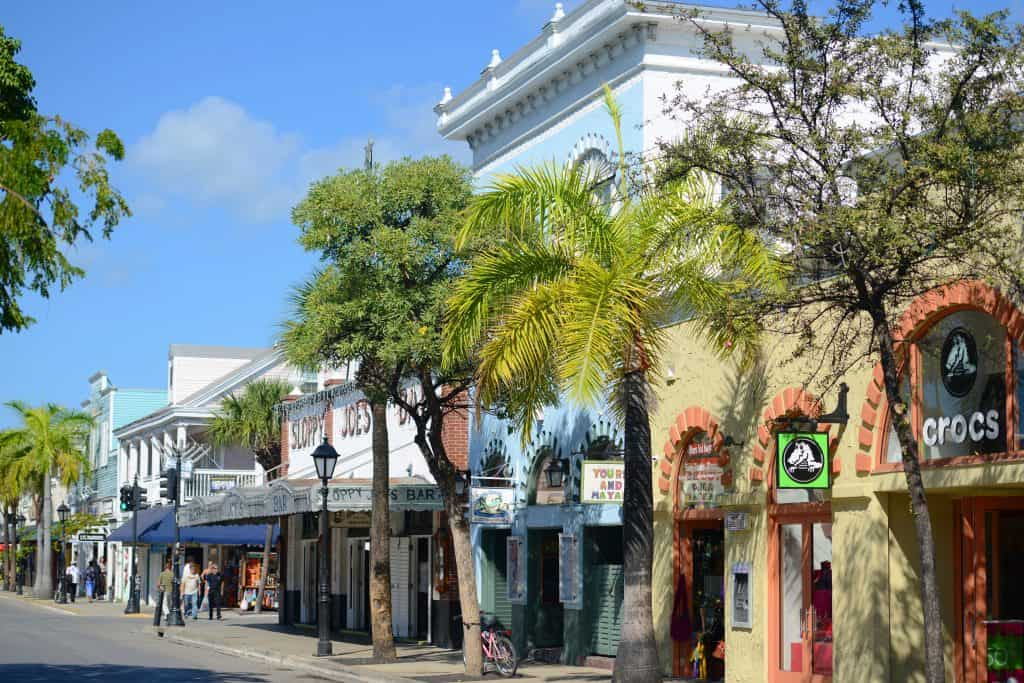 Palm tree lined street best things to do in key west