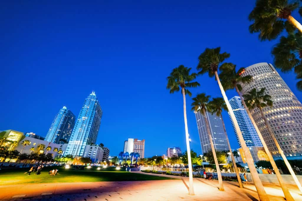 The swaying palm trees at dusk in Curtis Hixon Park, overlooking the downtown Tampa skyline.