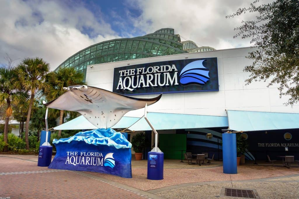 A giant manta ray greets visitors at the exterior of the Florida Aquarium, one of the best things to do in Tampa with kids.