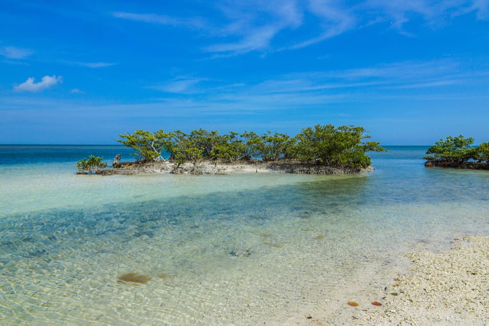 Photo of a beautiful island, floating in the turquoise water's of Biscayne National Park, a National Park in Florida