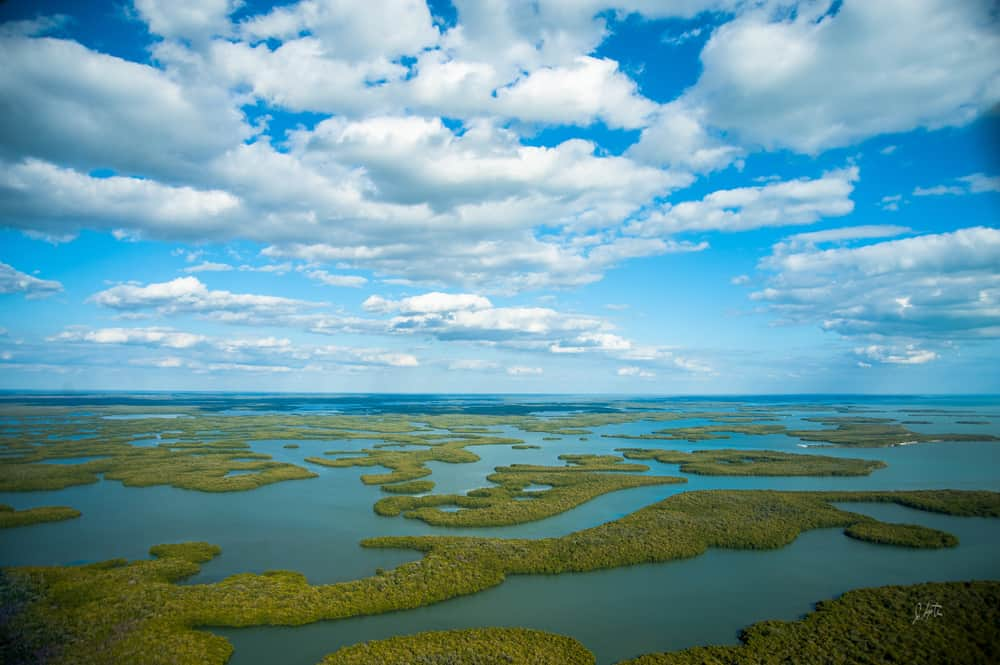 Aerial photo of the many islands in the Everglades National park, one of Florida's National Parks.