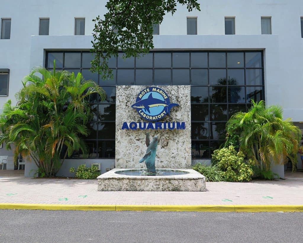 The exterior of the Mote Marine Laboratory & Aquarium, one of the best things to do in Sarasota.