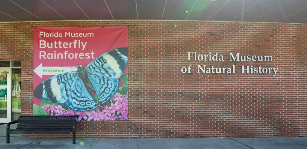 The exterior of the Florida Museum of Natural History at the University of Florida in Gainesville.
