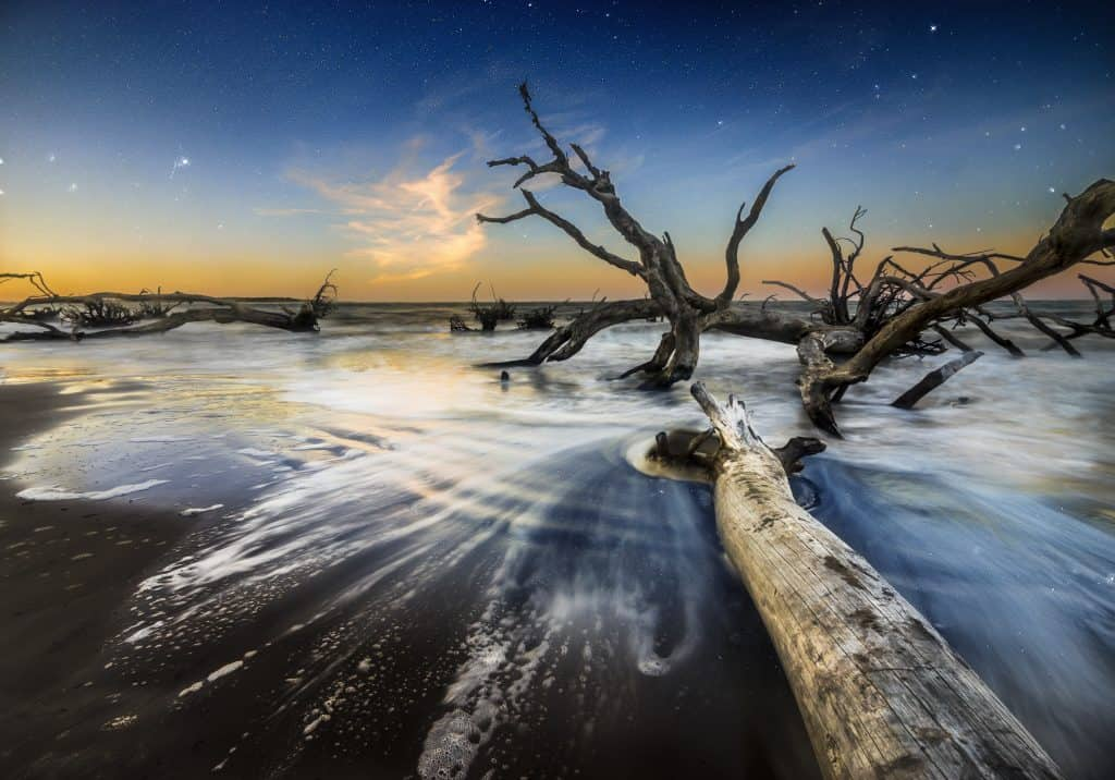 Driftwood is kissed by waves at sunset at Big Talbot Island State Park.