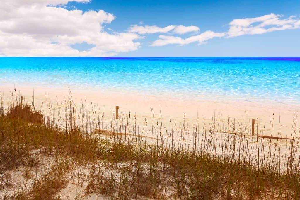 The clear waters of Henderson Beach State Park, one of the best things to do in Destin.