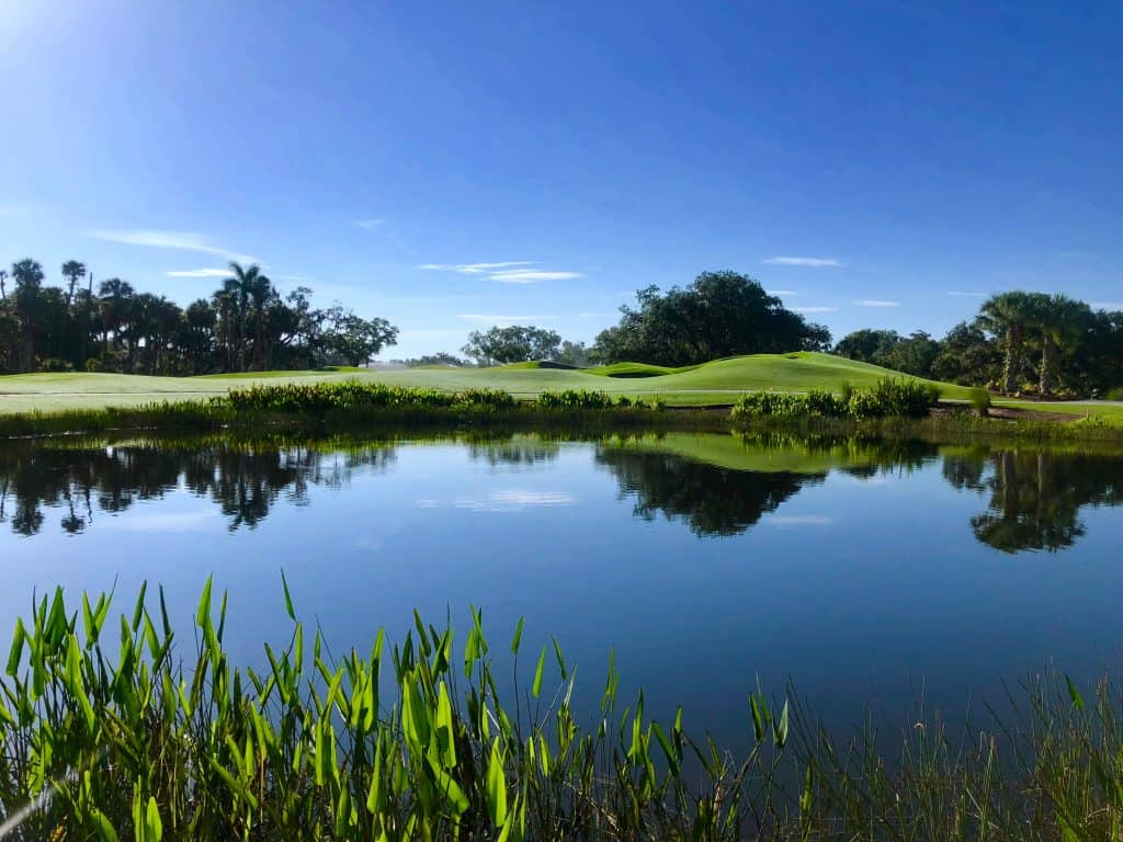 The Old Orange course at the Verandah Golf Club, its greens surrounded by beautiful lakes with aquatic plants.
