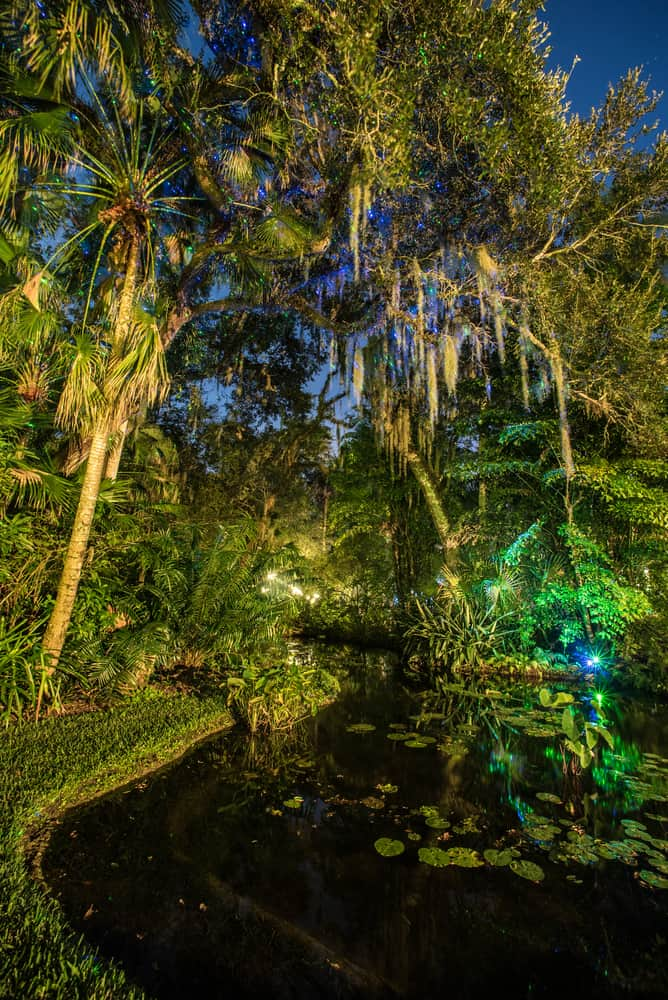 McKee Gardens is one of the things to do in Vero Beach with beautiful plants and ponds!