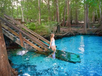 Ginnie Springs is one of the best springs near tampa