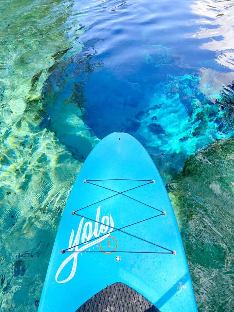 paddle boarding over Devil's Eye spring at Ginnie Springs in Florida