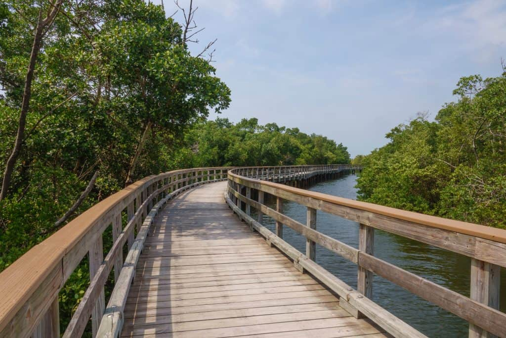 Photo of a boardwalk trail over water in Florida.