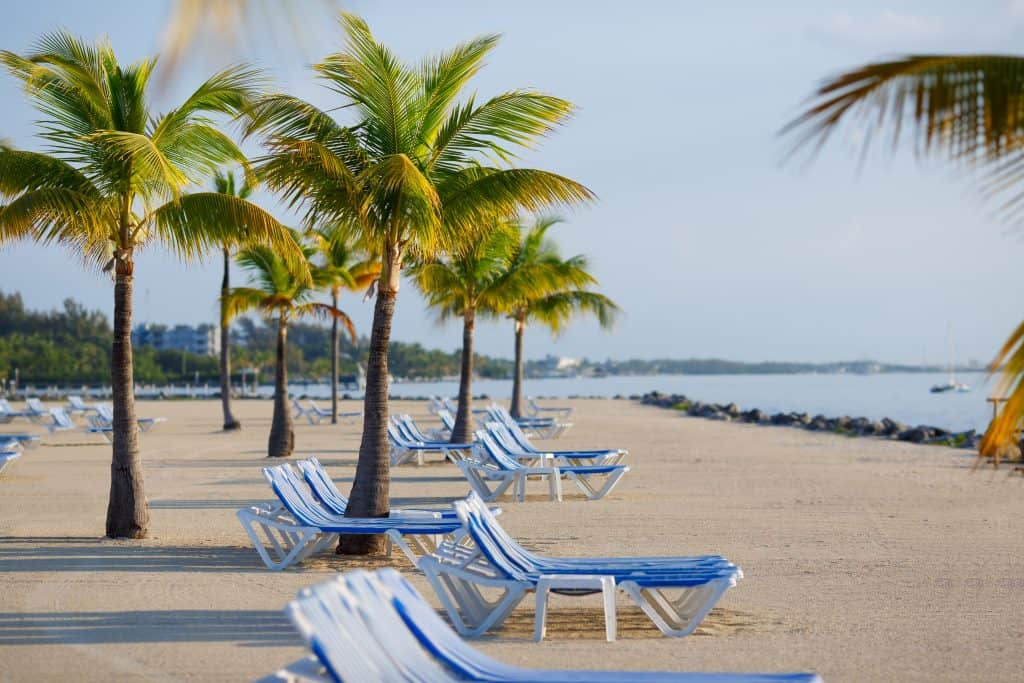Photo of palm trees and lounge chairs on a beach in Key West.
