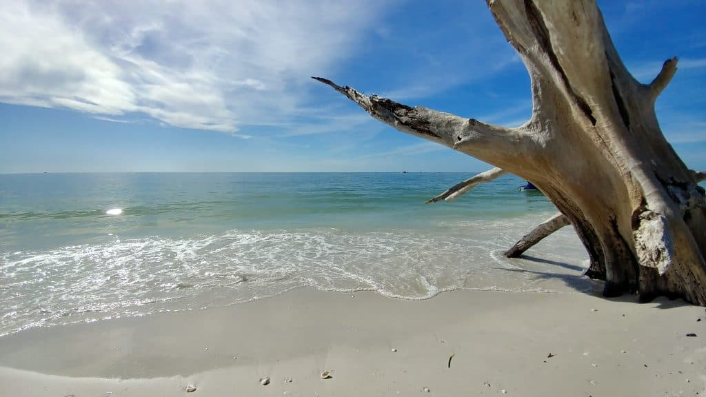 Photo of the beach at Lovers Key.