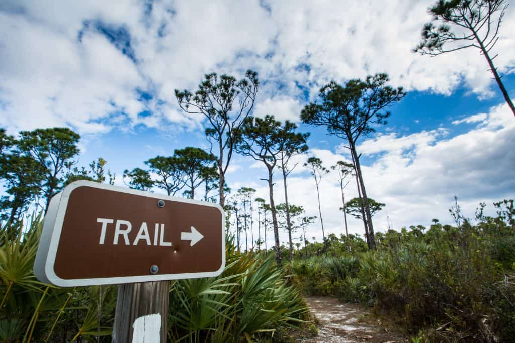 A sign points hikers towards their next adventure, exploring the best hiking in Florida!