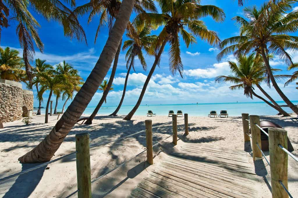 A beautiful tropical beach with palm tress