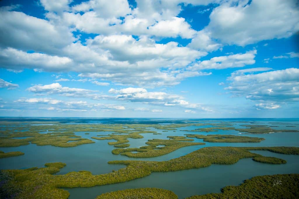 A drone shot of Everglades National Park in Miami.