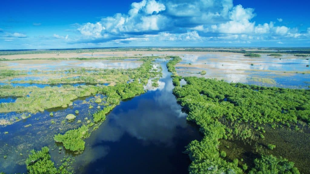 An aerial view of the waterways that connect the Everglades.