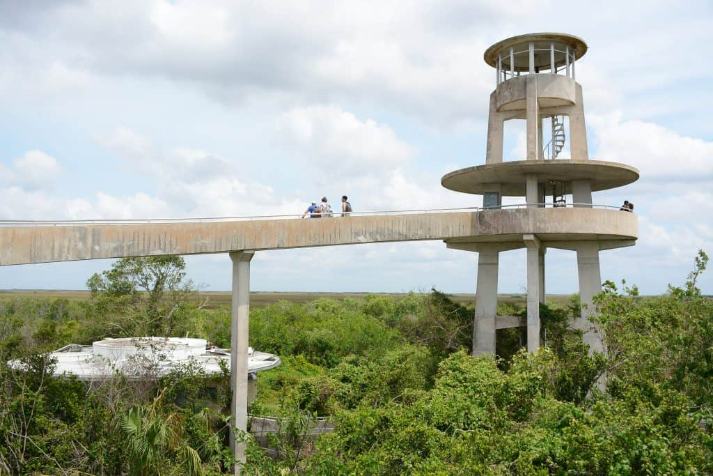 The concrete watch tower at Shark Valley provides an excellent view of the grounds and is one of the best things to do in the Everglades.