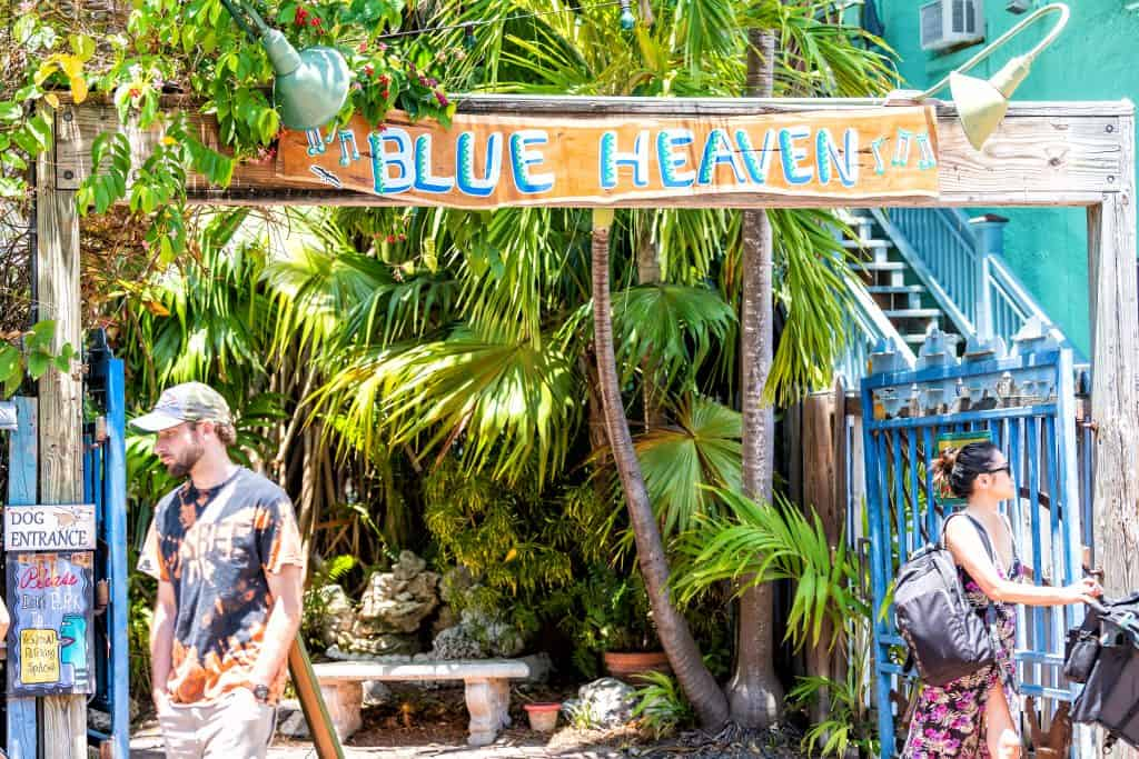 A sign for Blue Heaven hangs over a patio lush with tropical palm trees and a brightly colored fence.