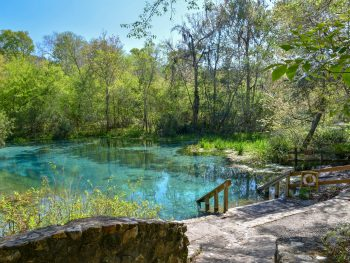 florida springs with camping