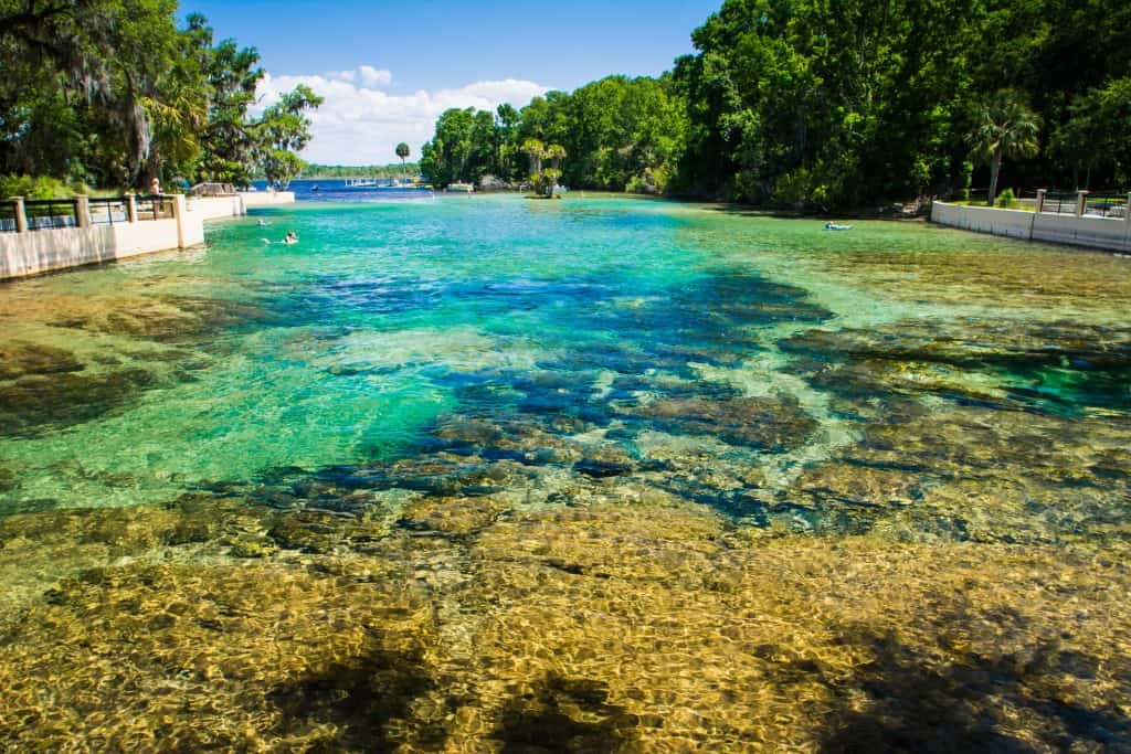 The clear waters of Salt Springs reveal the rocky bottom of the spring bed, one of the best Florida springs with camping.