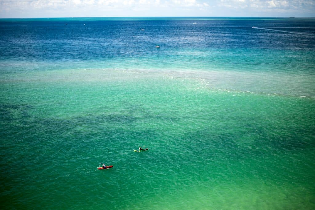 Two kayakers paddle though the emerald green waters of Biscayne Bay, perfect for kayaking in Miami.