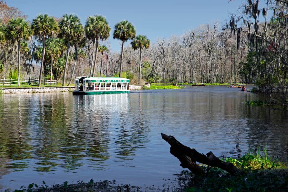 A glass bottom boat at Silver Springs