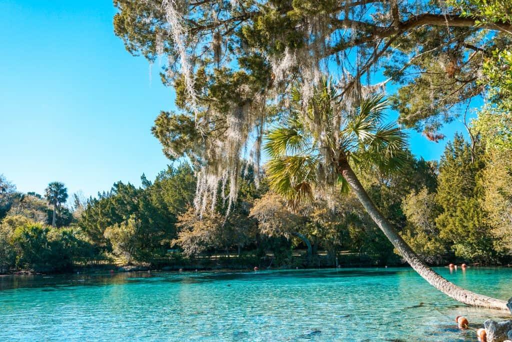 One of the springs near Orlando Glen Springs