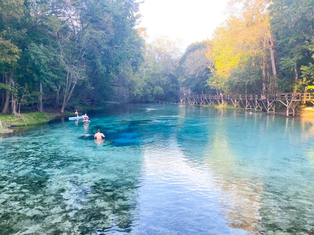 The clear blue waters of Gilchrist Blue Springs cool off swimmers and canoe paddlers.
