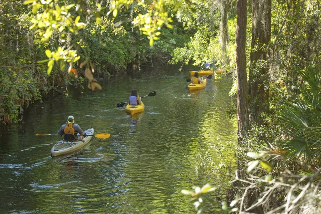 Paddlers float in their kayaks on Shingle Creek courtesy of the Paddling Company, one of the best things to do in Kissimmee.