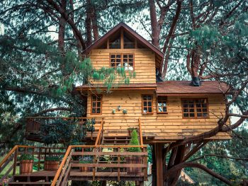 A beautiful treehouse sits in the woods.