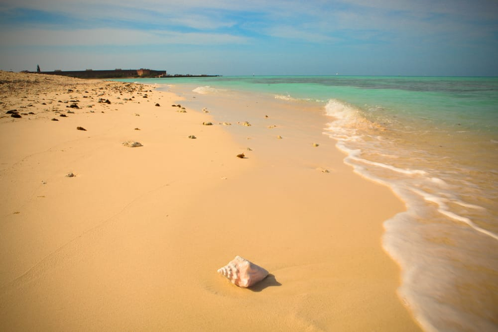 one of the beautiful beaches near Fort Jefferson