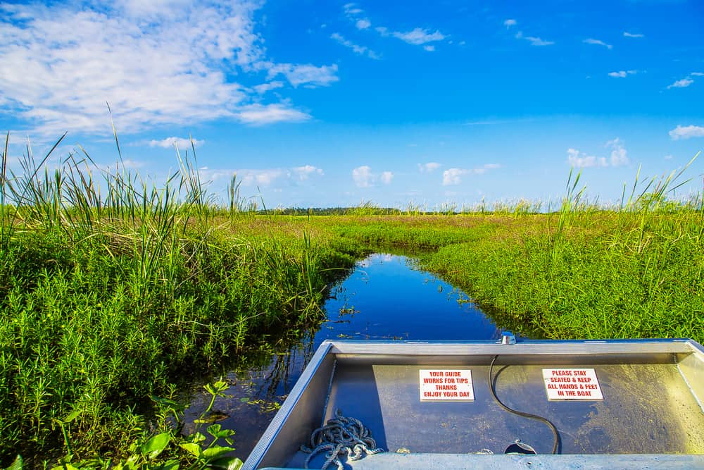 Taking a private airboat tour shows you parts of Everglades National Park that the bigger boats can't get to.