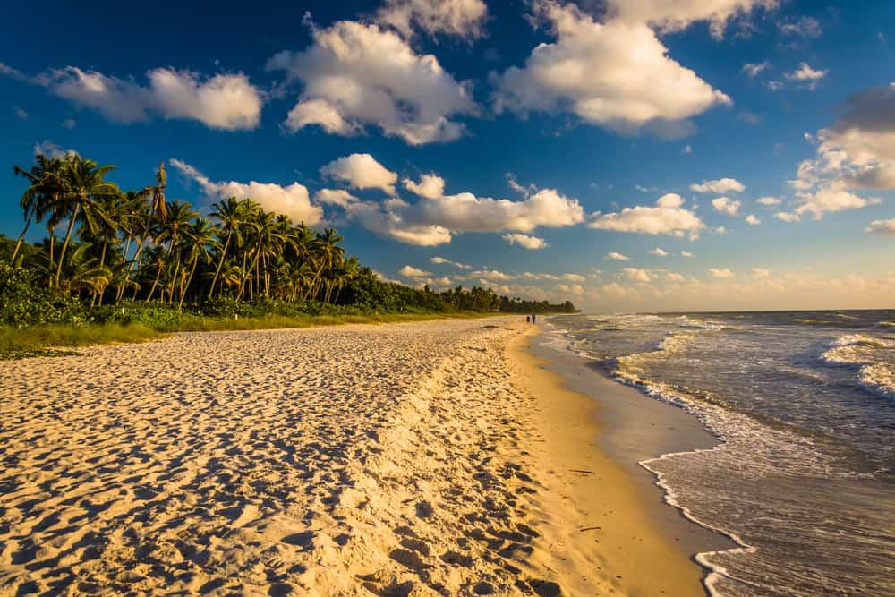 Naples one of the Flroida gulf beaches