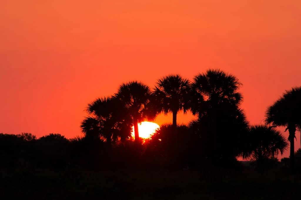 The sun sets at Kissimmee Prairie Preserve State Park, one of the best places to go stargazing in Florida.