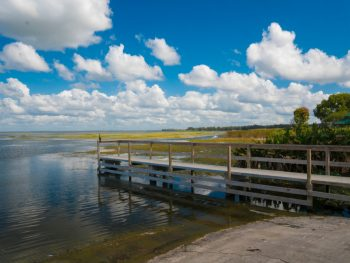 a fall day on Lake Apopka in Florida