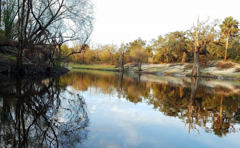 Photo of a serene day on the Peace River, one of the most beautiful Florida rivers.