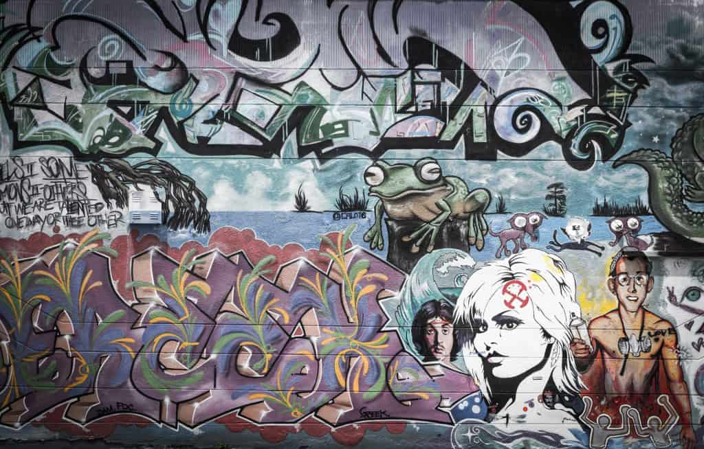 A beautiful mural at the Wynwood Walls features graffiti style images of a woman and a frog.