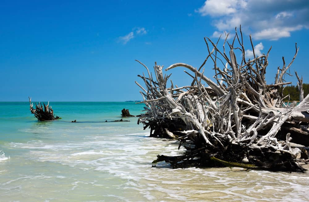 Beer can island one of the best florida beaches for couples.