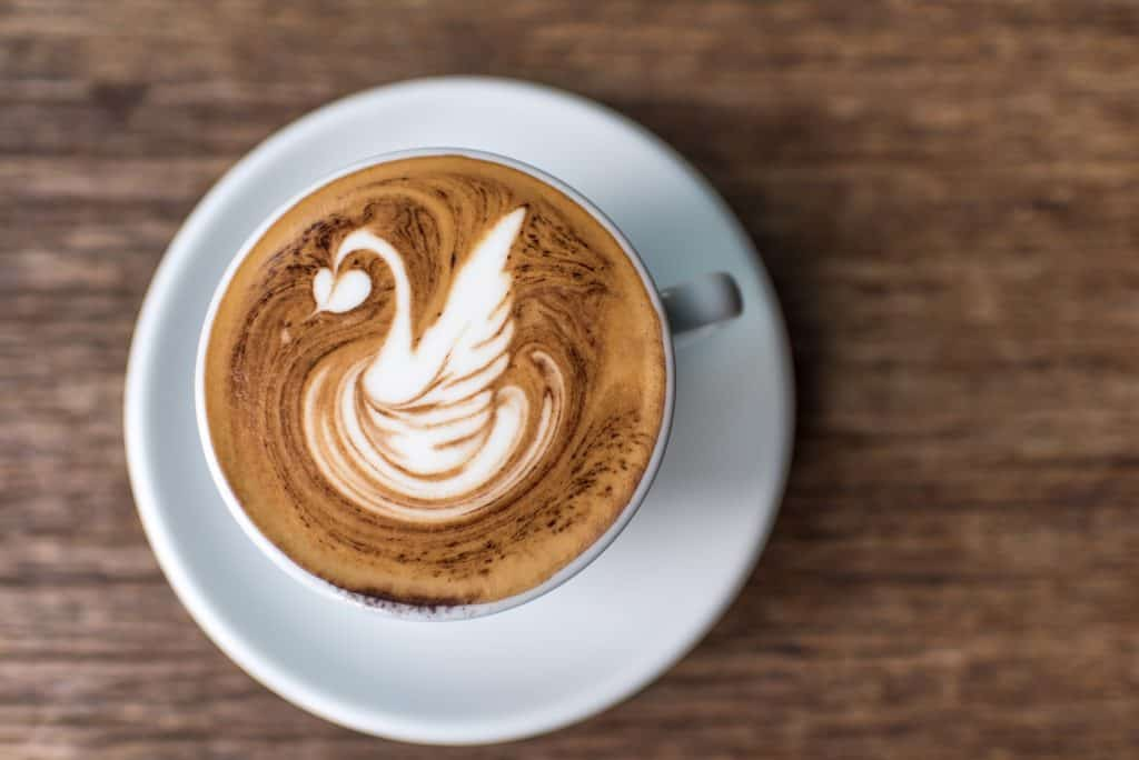 Latte art in the form of a swan, one of the hardest free-hand pours.