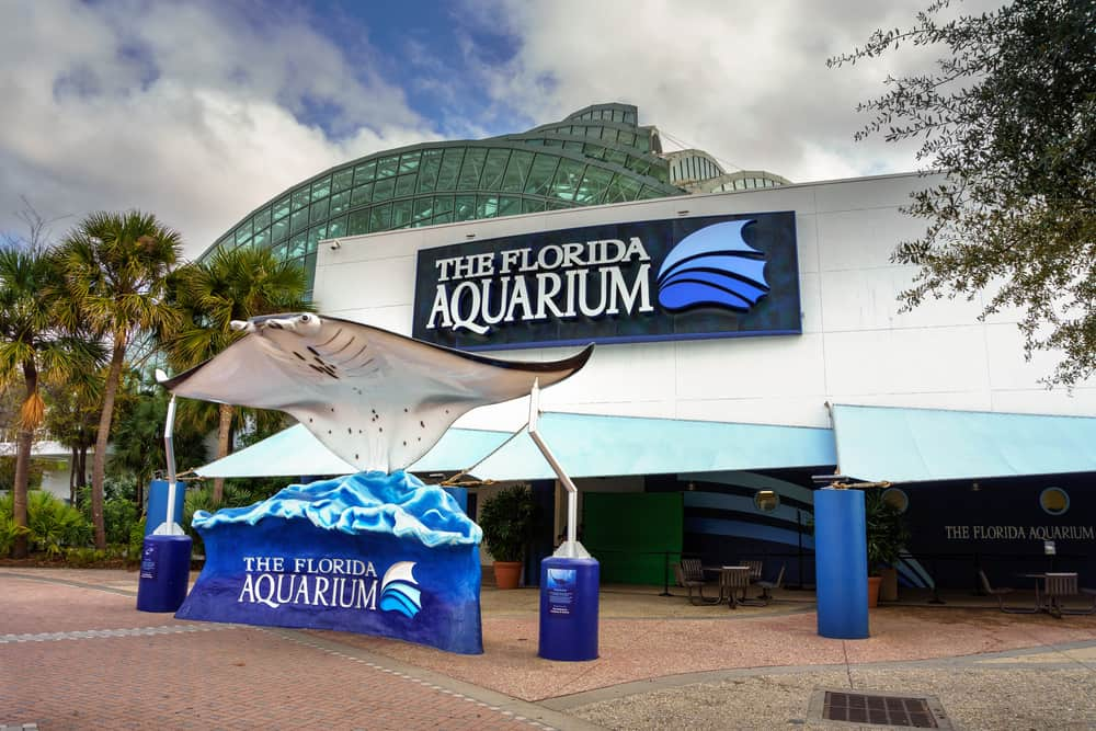 Located in Tampa, Florida, this 250,000 foot aquarium is the perfect things to do in Central Florida for families, friends, and even dates!