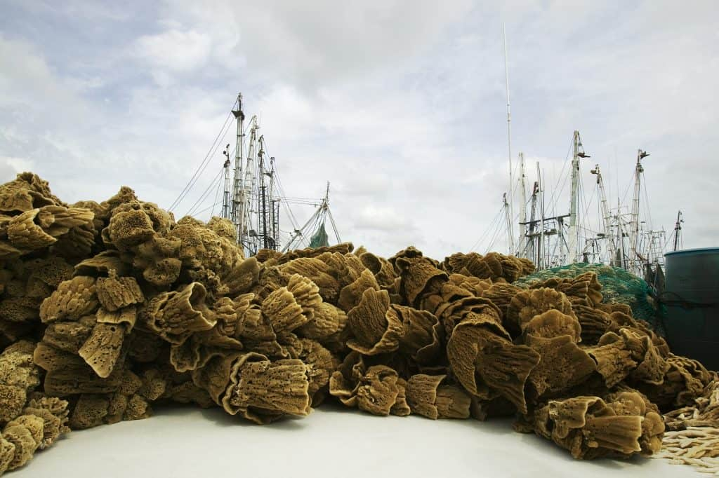 Bunches of sea sponges are piled on the shores of Tarpon Springs, one of the best small towns in Florida.