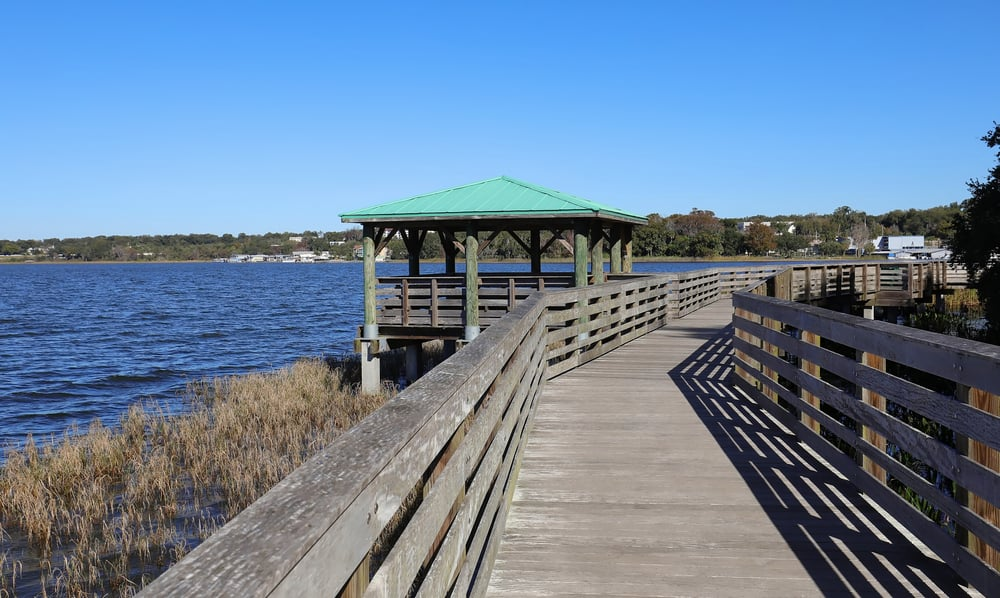Head to Palm Island Park and take a walk on the wooden boardwalk just 15 minutes from downtown