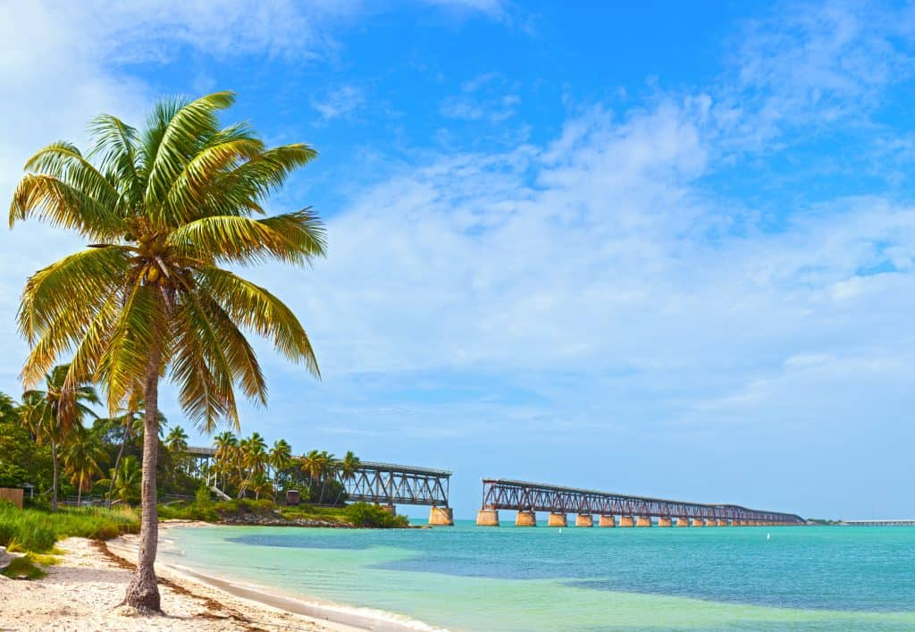 A palm tree sits in the foreground on a beach with the old bridge crumbling in the background at Bahia Honda State Park, one of the best things to do in the Keys.